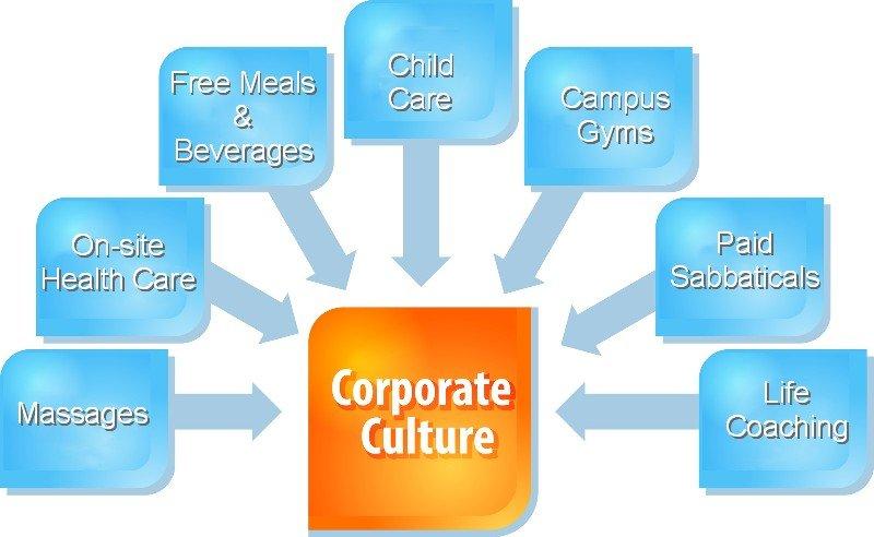 corporate culture chart